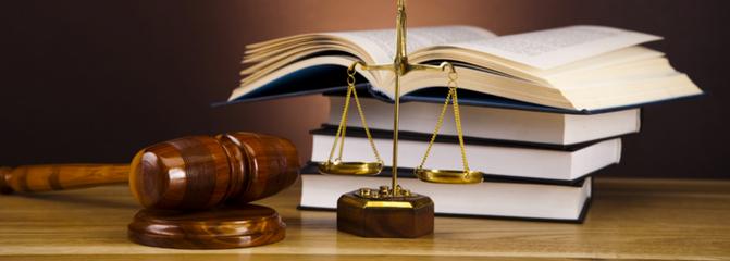 5-razones-estudiar-derecho-up.png