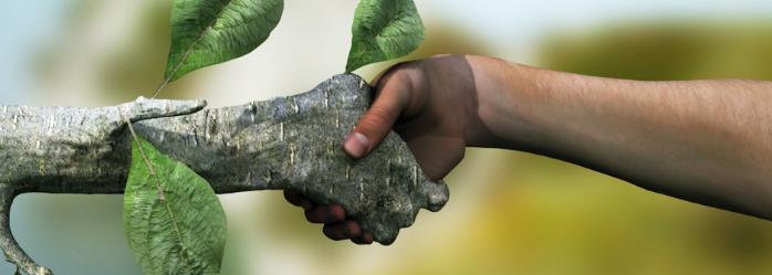 prepaup-razones-para-incluir-la-sustentabilidad-en-la-educacion.png