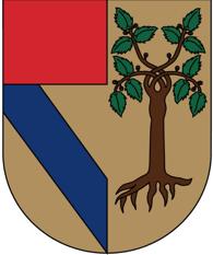 escudo_up_historia.png