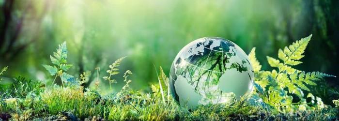 ¿Cómo pueden contribuir las jóvenes a la mejora del medio ambiente?